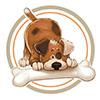 Барбос Эталон - магазин натуральноых кормов для собак